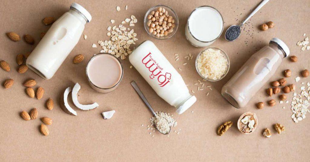 طرز تهیه شیرهای گیاهی بدون لاکتوز- مجله زندگی رویسا