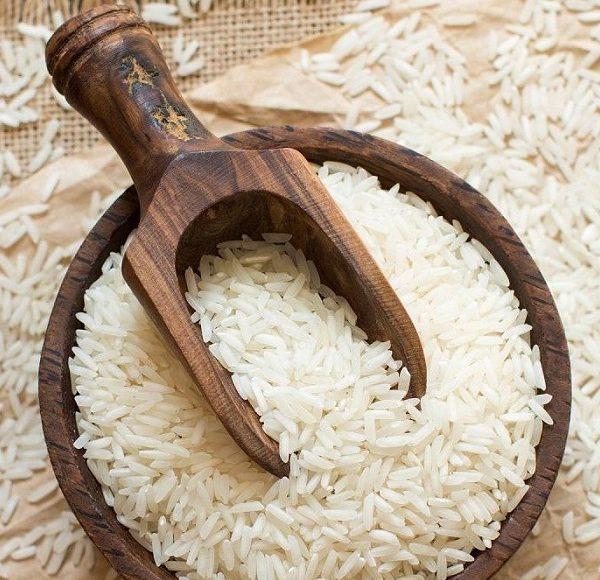 کشت دوم برنج